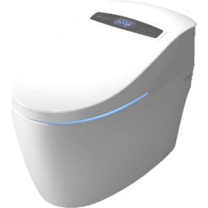 WC japonais monobloc TopToilet